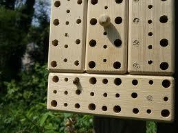 wildbienenhaus1.jpg